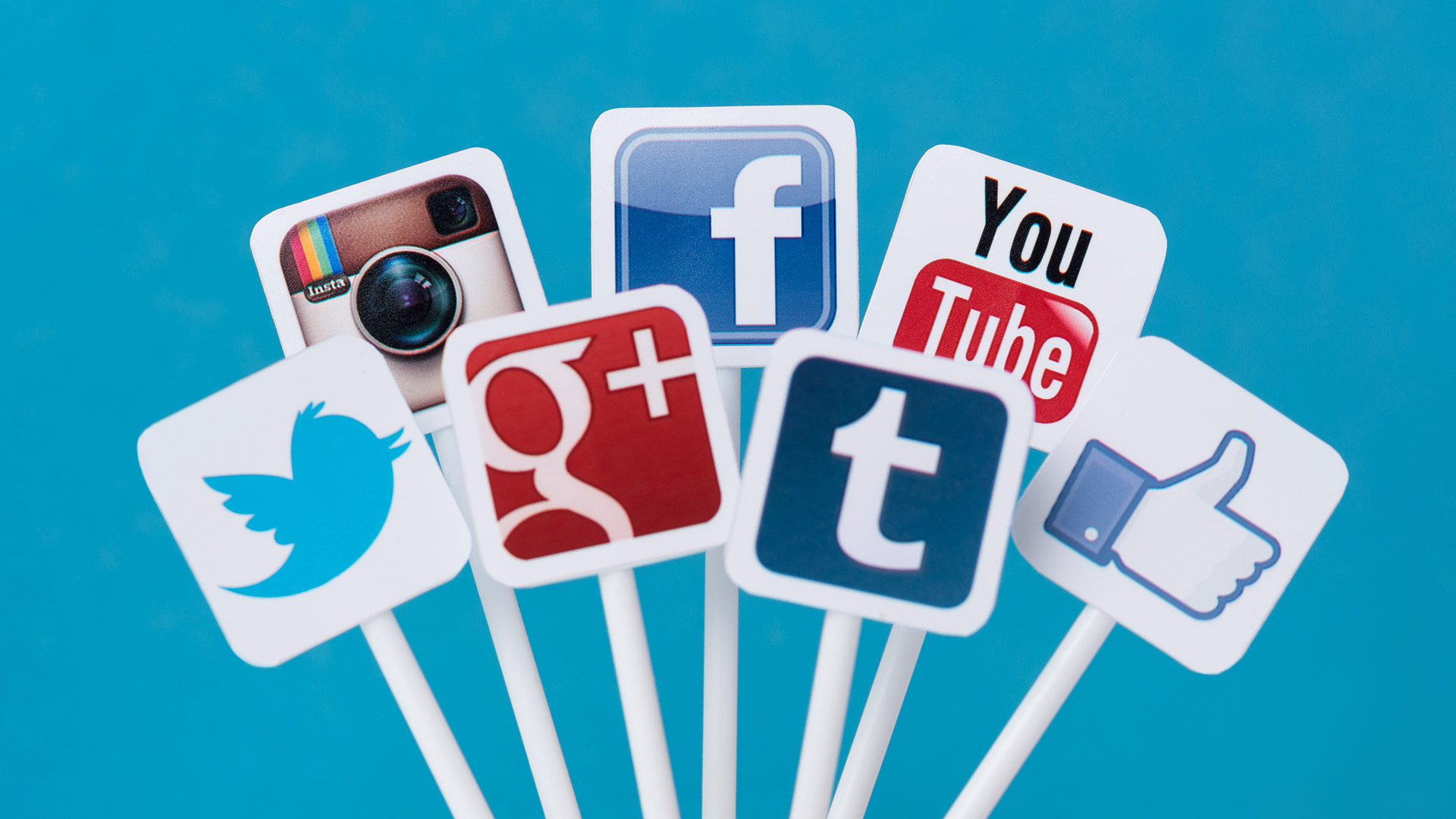 How Do Social Media Signals Affect Your SEO?