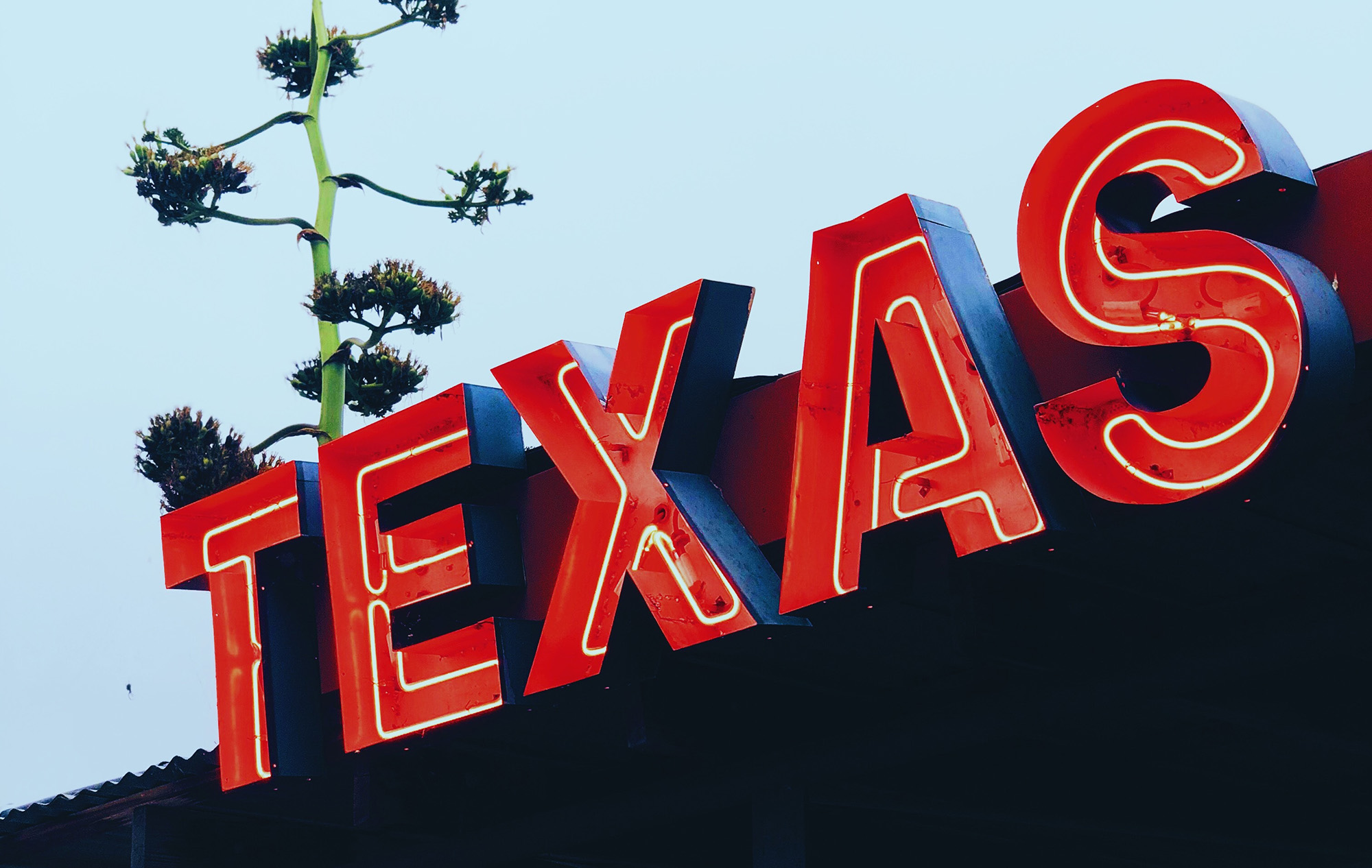 Texas is the Number One State for Business Start Ups